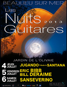 nuits-guitares-2013