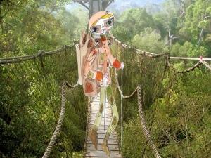 pont-de-singe
