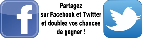 facebook copie