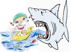 Griotte aux requins