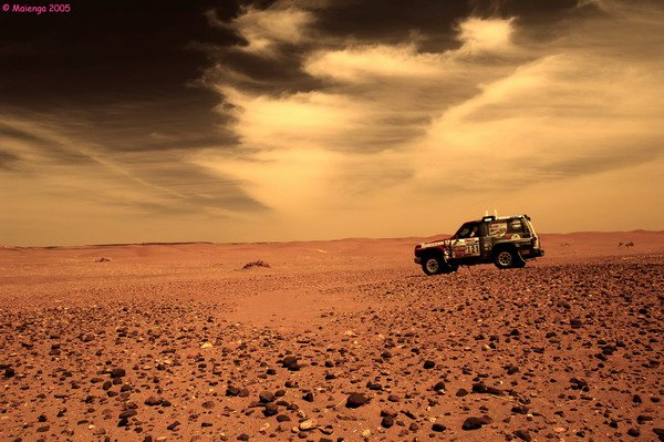 les-scorpions-des-dunes-rallye-aicha-des-gazelles-2013-2