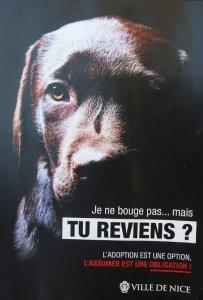 Tourette-Levens le 09/07/2014 - Refuge de la Conca, Chemin Puei de la Madone pour enquete sur l'abandon des animaux durant l'ete - Papier : Ch.Rinaudo.
