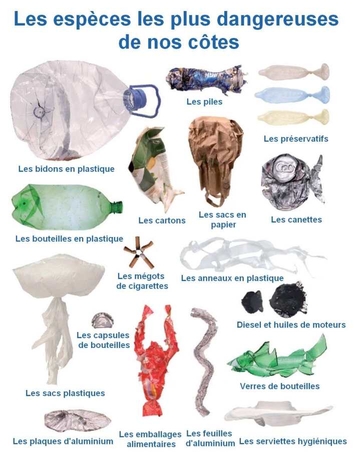 terre-polution-plastique-continent-cote-basque-planete-bouteille-vert-greenpeace-danger-baignade-ocean-parlementia-ouest-surf-sauvegarde-mer