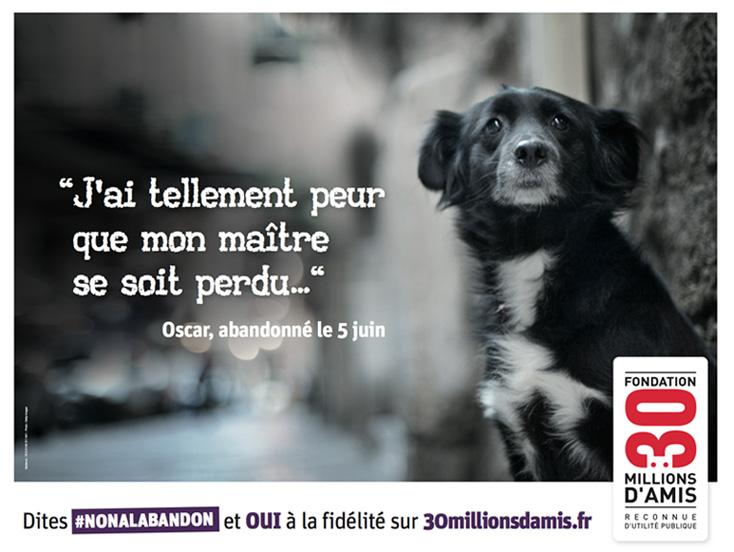 campagne-chien_abandon_Fondation_30_millions_d_amis_2014