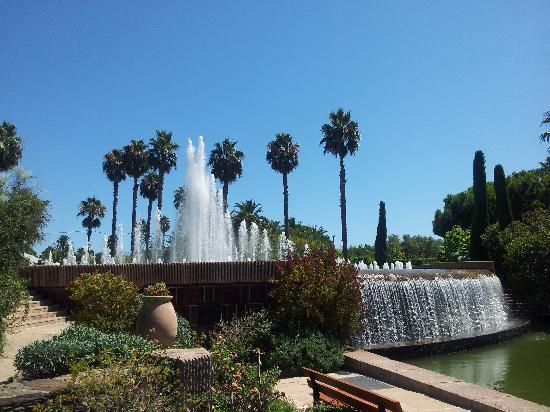 Le Parc Phoenix, parc zoologique et botanique